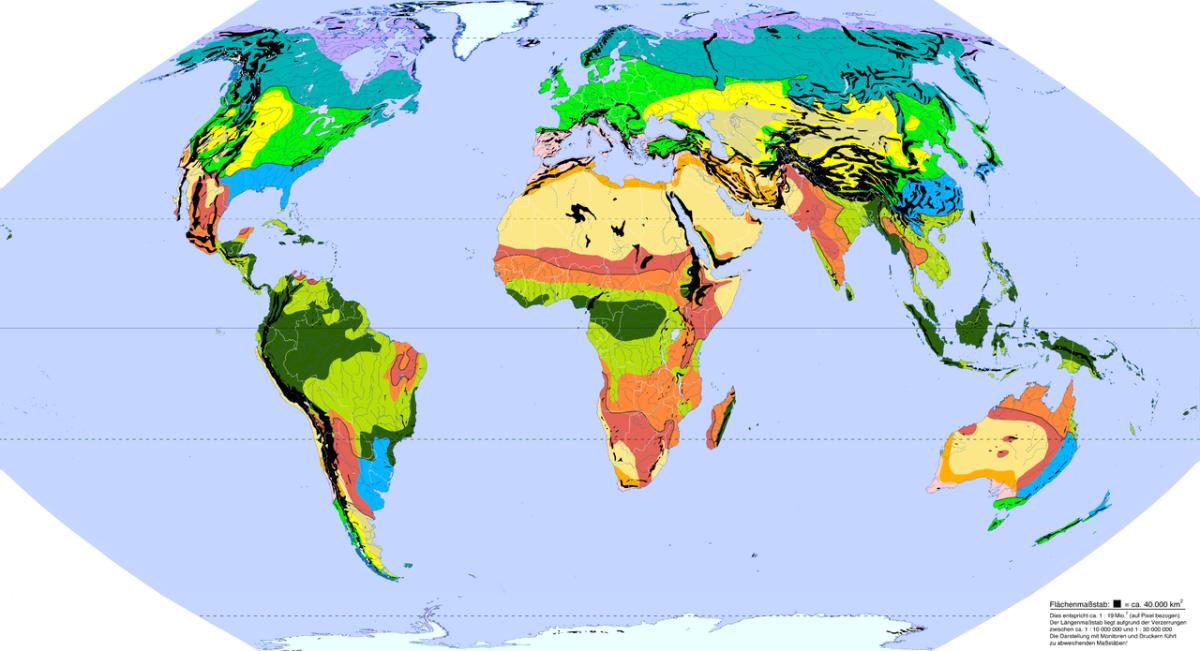 Vegetationskarte